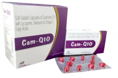 cam_q_10