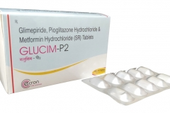 glucim_p2