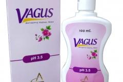 vagus_new