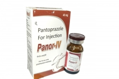 panor_iv