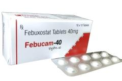 febucam_40