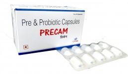 Pre Probiotic Capsules Manufacturers Suppliers
