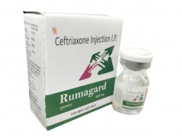 Ceftriaxone Injection Manufacturers Suppliers
