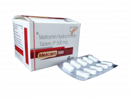 Metformin 500mg tablet Manufacturers Suppliers