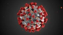 effect of corona virus on pcd pharma companies